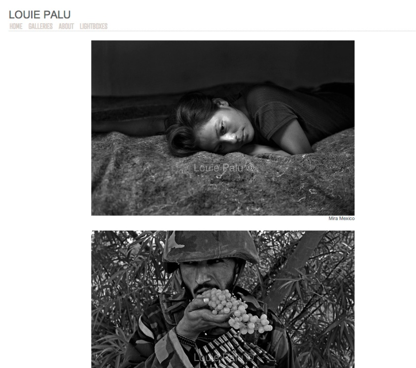 Louie Palu's website